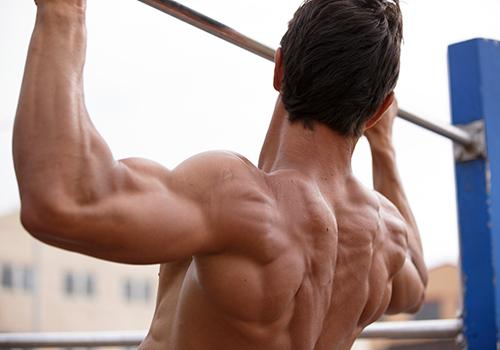 広背筋 懸垂 筋肉