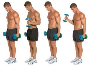 standing-hammer-curl-exercise-2