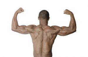 筋肉がすごい男性の後ろ姿