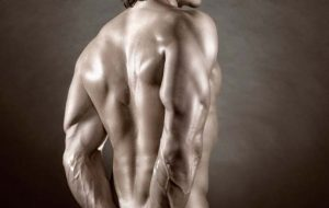 triceps-back-shot-man