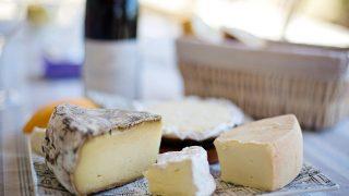 食べやすいチーズは筋トレにもおすすめ?!効果や種類を解説!