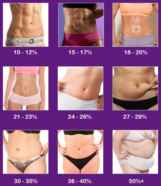 体脂肪率別女性の体型の見た目